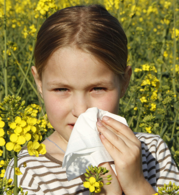 Treatment for Allergies